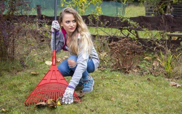 Przydatne narzędzia do jesiennych prac w ogrodzie